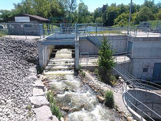 Thornbury Dam nature-like fishway upstream view