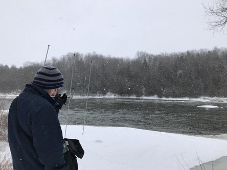radiotracking rainbow trout