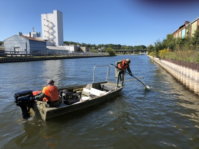 boat electrofishing fish salvage