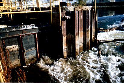 entrance vertical slot fishway