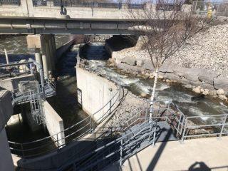 Thornbury dam nature-like fishway downstream view