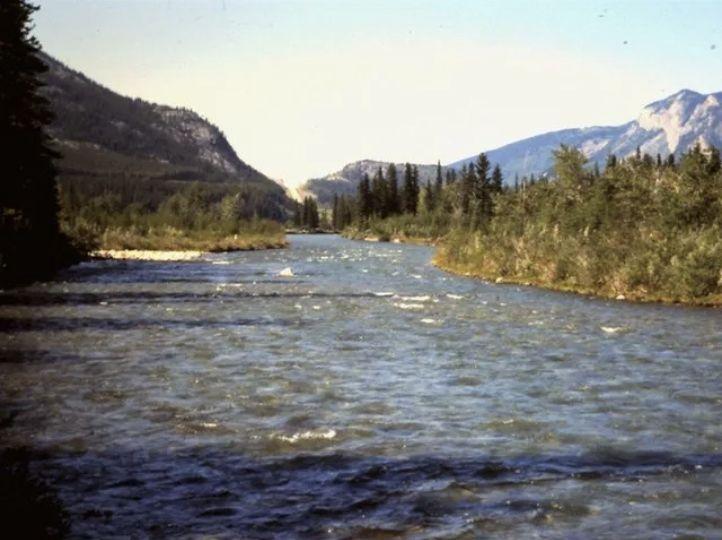 kananaskis river