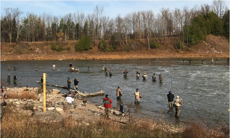 anglers downstream denny's dam